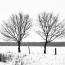 winter6_klein